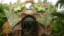 Arenal Natura Ecological Park Tour, La Fortuna, Nature & Wildlife