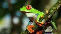 Photography Tour at Arenal Natura Ecological Park, La Fortuna, Photography Tours