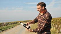 3-Hour Champagne Region Vineyard Visit from Reims with Wine Tasting and Picnic, Reims, Wine Tasting ...