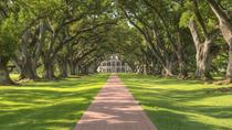 Oak Alley Plantation Tour With Private Transportation, New Orleans
