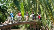 4-day Small-Group Southern Vietnam Tour, Ho Chi Minh City, Multi-day Tours