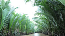 Private Tour: Rural Mekong Delta from Ho Chi Minh City , Ho Chi Minh City, Private Day Trips