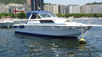 Private Small-Group Motorboat Tour in Rio de Janeiro, Rio de Janeiro, Private Sightseeing Tours