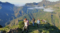 Madeira's Cliffs and Valleys Jeep Tour from Funchal, Funchal, Walking Tours