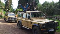 Private Madeira Half-Day Jeep Tour: East or West, Funchal, Private Sightseeing Tours