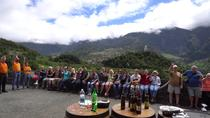 Skywalk and Wine Tasting 4x4 Half Day Tour, Funchal, 4WD, ATV & Off-Road Tours
