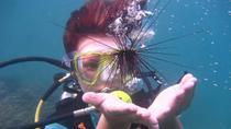 Discover Scuba Diver, Pattaya, Scuba Diving
