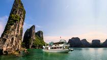 Halong Day Cruise from Hanoi including Kayaking, Caving and Tea Party, Hanoi, Day Cruises