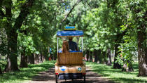 Adelaide 90-Minute Pedicab Tour: Scenic Green & River Experience, Adelaide, Pedicab Tours