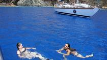 Boat and Open Roof 4x4 Tour, Funchal, 4WD, ATV & Off-Road Tours