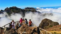 Madeira Peaks - Open 4X4 Full-Day Tour, Funchal, Full-day Tours