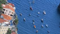 Private Half-Day Morning 4x4 Tour from Funchal, Funchal, 4WD, ATV & Off-Road Tours