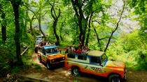 Vineyards y Colours - open 4x4 afternoon, Funchal, 4WD, ATV & Off-Road Tours