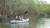 Kayaking Eco Tour in Fort Myers, Fort Myers, Kayaking & Canoeing