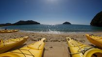 Full-Day Abel Tasman Kayak and Walk, Nelson, Kayaking & Canoeing