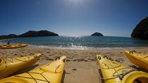 Full-Day Abel Tasman Kayak and Walk, Nelson, Kayaking & Canoeing