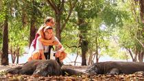 3-day Komodo National Park tour from Labuhanbajo, East Nusa Tenggara, Multi-day Tours