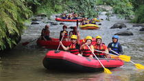 Bali Rafting Adventure on the Ayung River, Ubud, River Rafting & Tubing