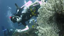 2-Day PADI Advanced Open Water Dive Course in Bali, Bali, Scuba Diving