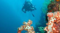 3-Day PADI Open Water Scuba Diving Certification Course in Bali, Bali, Scuba Diving