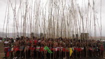 Annual Royal Zulu Reed Dance, Durban, Cultural Tours
