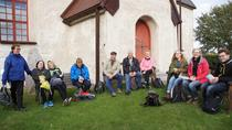 Full-Day Swedish History Trip to World Heritage Candidate Markim-Orkesta from Stockholm, Stockholm, ...