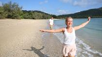 1-Night Whitsundays Tour by Catamaran with Paradise Cove Resort from Airlie Beach, ウィットサンデー諸島とハミルトン島