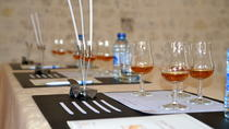 Cognac Masterclass Tour, Cognac, Private Sightseeing Tours