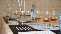 Cours magistral sur le cognac, Cognac, Private Sightseeing Tours
