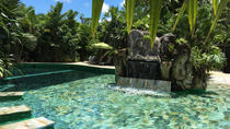 Relaxing Mineral Hot Springs Full Day Pass with Optional Lunch or Dinner, La Fortuna