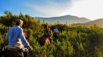 3-days Maipo Valley wine, food and cultural tour, Santiago, Multi-day Tours