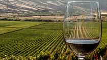 7-days Malbec and Tannat wine tour, Mendoza, Wine Tasting & Winery Tours