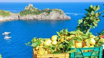 Amalfi Lemon Tour Experience, Amalfi, Food Tours