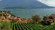 Domaso: Wine Tasting at the Winery on Como Lake, Lake Como, Wine Tasting & Winery Tours
