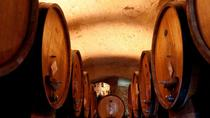 Exclusive Wine Tasting in Montepulciano with Light Lunch, Montepulciano, Wine Tasting & Winery Tours