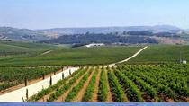 From Lisbon: Wine tasting tour at the winery, Lisbon, Wine Tasting & Winery Tours