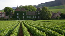 Half Day Burgundy History and Wine Tasting tour, Burgundy, Historical & Heritage Tours