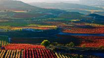 La Rioja full-day wine tour with lunch, Bilbao, Wine Tasting & Winery Tours
