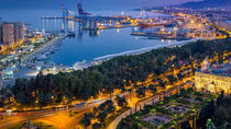 Malaga: special Spanish dinner with local chef, Malaga, Food Tours
