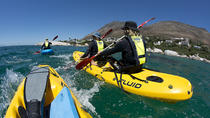 Paddling Your Sea Kayak with Penguins In Cape Town, Cape Town, Kayaking & Canoeing