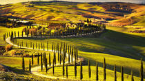 Radda in Chianti: Wine Tasting Tour with lunch at the Castle, Siena, Attraction Tickets