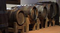 Traditional Balsamic Vinegar Tasting Tour in Parma, Parma, Food Tours