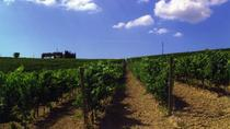 Wine Tasting Tour in the Umbrian Hills with Lunch, Assisi, Wine Tasting & Winery Tours