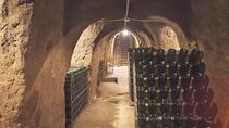 Zagarolo, Learn a new tasting approach in a family winery, Rome, Wine Tasting & Winery Tours