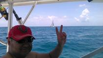 Half Day Haulover Sandbar Private Boat Charter, Miami, Day Cruises