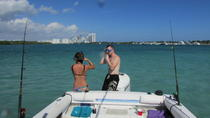 Half Day Haulover Sandbar Private Boat Charter, Miami