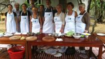 Full-Day Hue Bike Tour to Thuy Bieu With Cooking Class and Perfume River Cruise, Hue, Day Trips