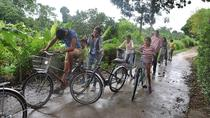 Thuy Bieu Day Trip by Bicycle from Hue City , Hue, Day Trips