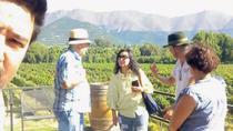Aconcagua Private Wine Lovers Premium Tour, Santiago, Wine Tasting & Winery Tours