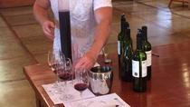 Be a Winemaker for a Day, Santiago, Wine Tasting & Winery Tours